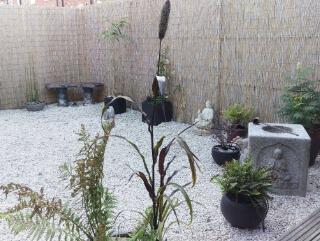 Tina Shaw's Zen Garden